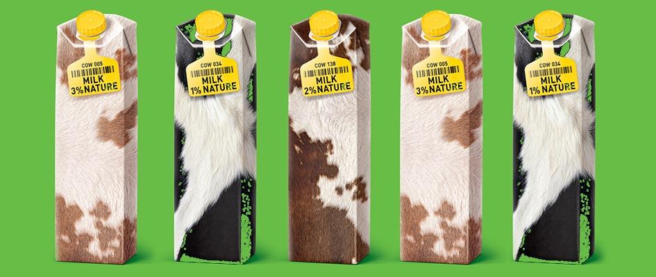 Разработка логотипа для бренда по продаже молочной продукции